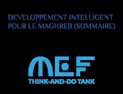 DEVELOPPEMENT INTELLIGENT POUR LE MAGHREB (SOMMAIRE)