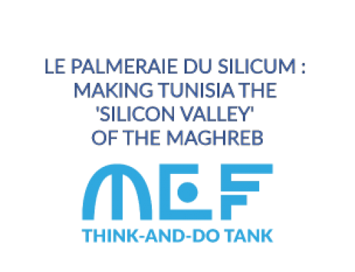 LE PALMERAIE DU SILICUM : MAKING TUNISIA THE 'SILICON VALLEY' OF THE MAGHREB